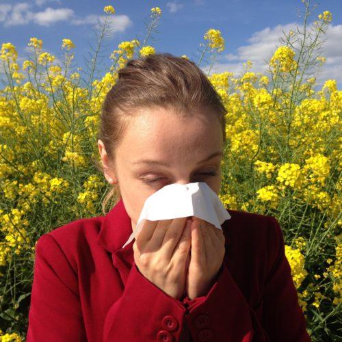 Il soft computing per investigare le allergie